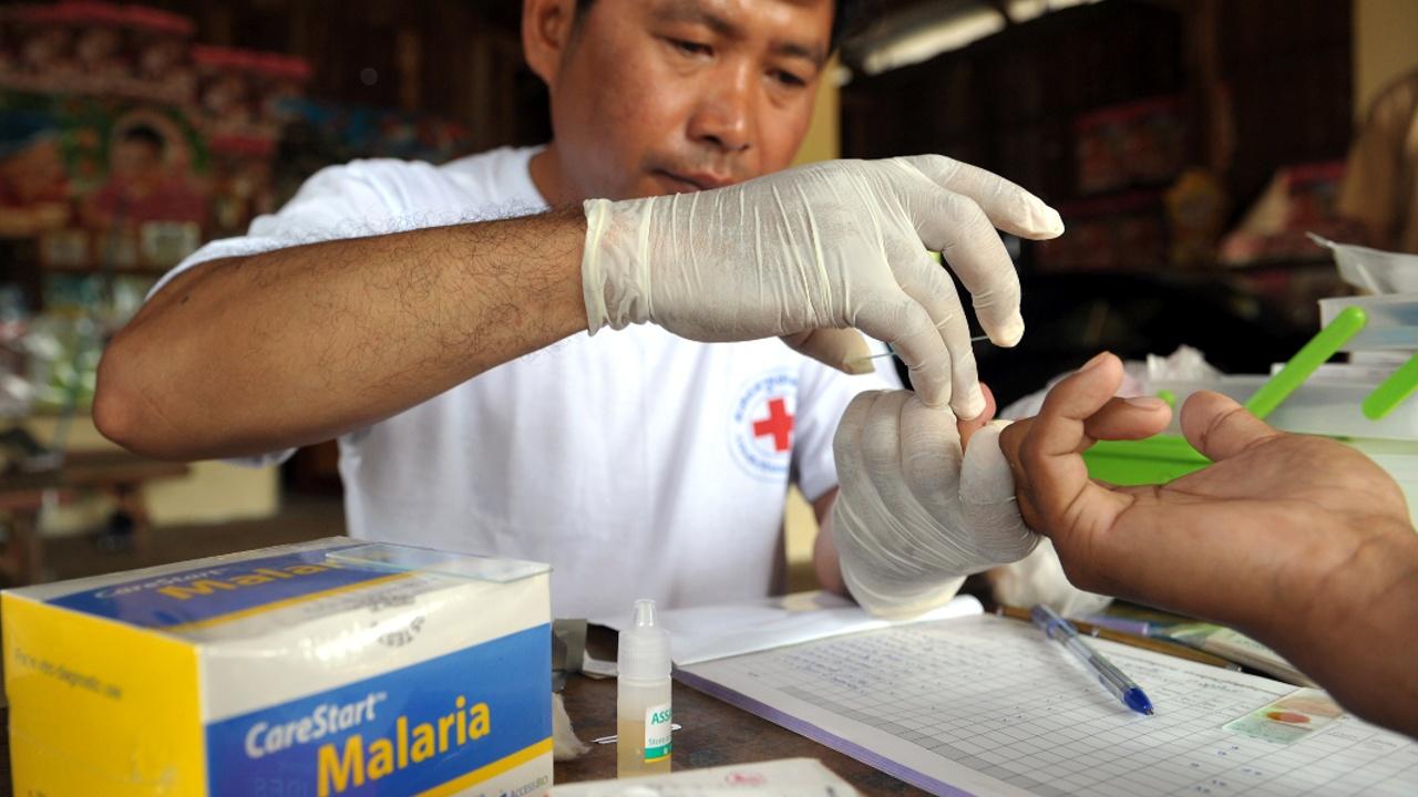 ВОЗ: в Венесуэле малярия распространяется быстрее, чем в других странах
