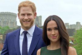 Королевская свадьба: собаки, мужской хор и восковые фигуры Меган и Гарри