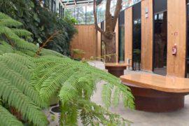 Экологичный ресторан в Испании использует энергию солнца и дождевую воду