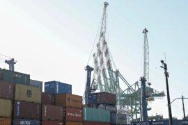ОЭСР: мировому экономическому росту угрожает торговая война