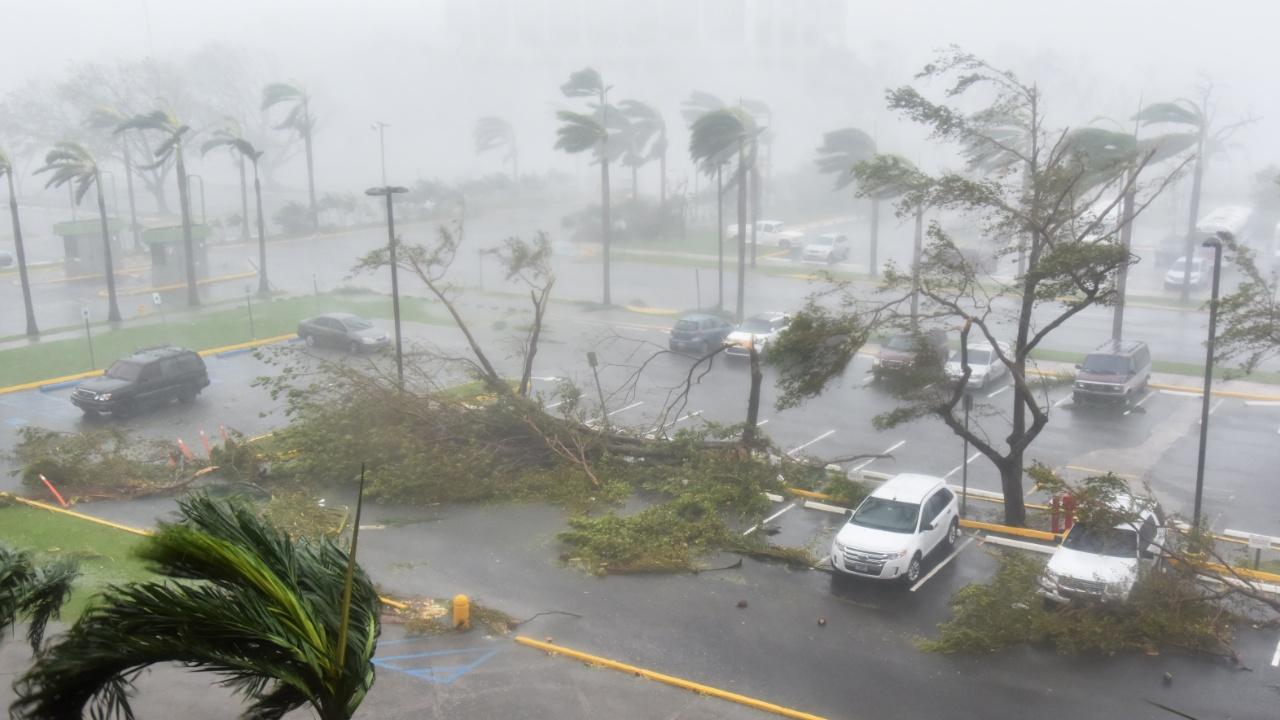 Исследователи: жертв урагана «Мария» в Пуэрто-Рико было в сотни раз больше