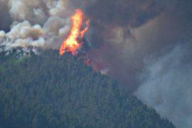 Жители более 2000 домов эвакуированы в США из-за лесного пожара