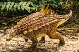 Новый вид динозавров открыли в Мексике