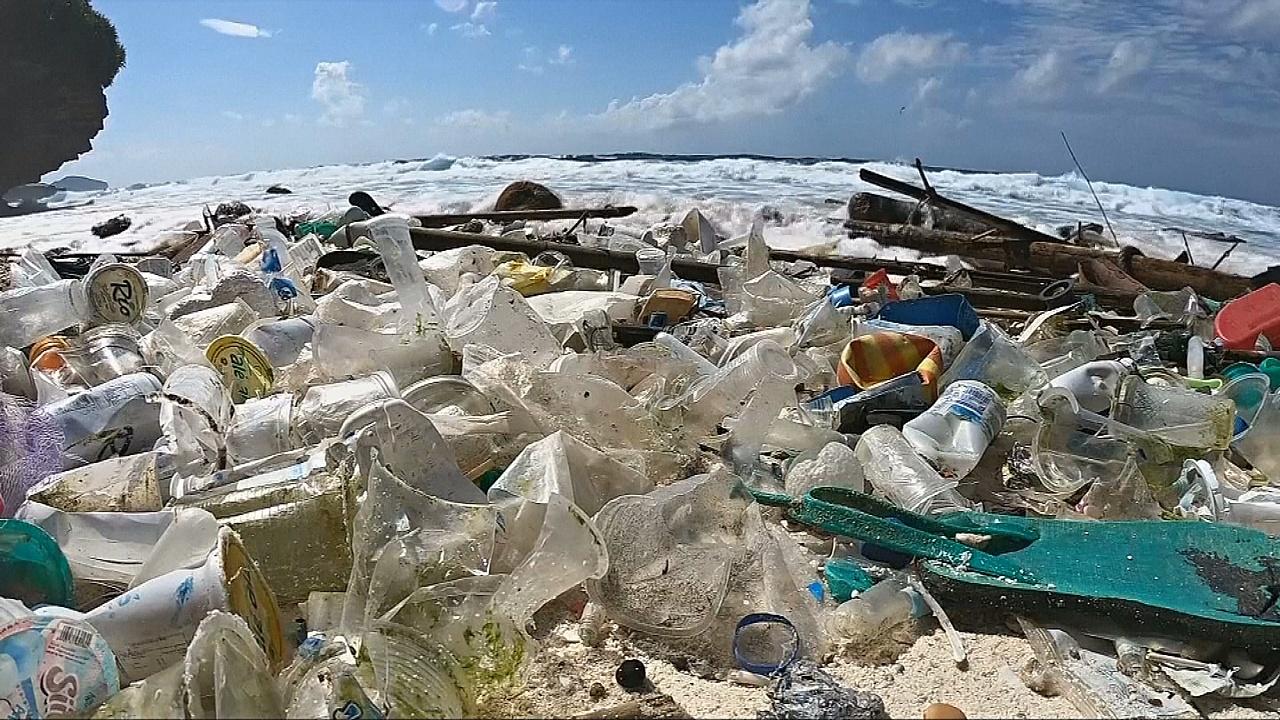 Пластиковый мусор: возможно ли решить проблему