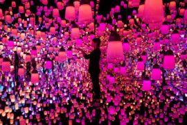 Мир цвета и света без границ: чем удивляет новый музей в Токио