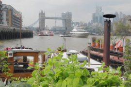 Лодки вместо квартир: почему лондонцы хотят жить на воде