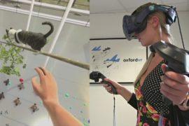 Победить страх высоты помогает виртуальная реальность