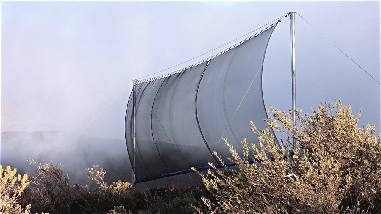 «Ловушки для туманов» помогают фермерам добывать воду