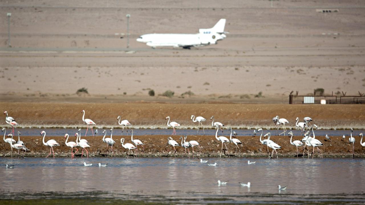 Эйлат будет привлекать туристов из Европы новым аэропортом