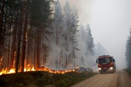 Тушить лесные пожары в Швеции помогают итальянцы