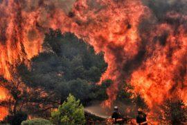 Число жертв пожаров в Греции достигло 74