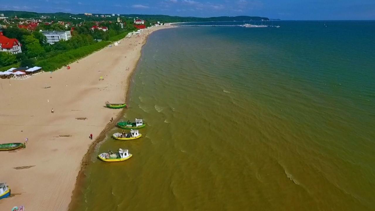 В Польше из-за цветения водорослей закрывают пляжи