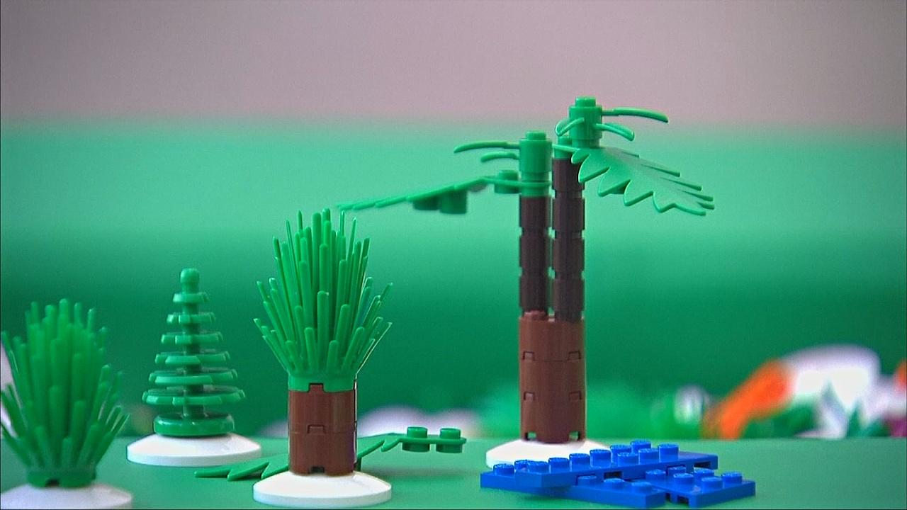 Lego откажется от нефти в пользу тростника
