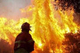 На юге Португалии не могут справиться с лесными пожарами