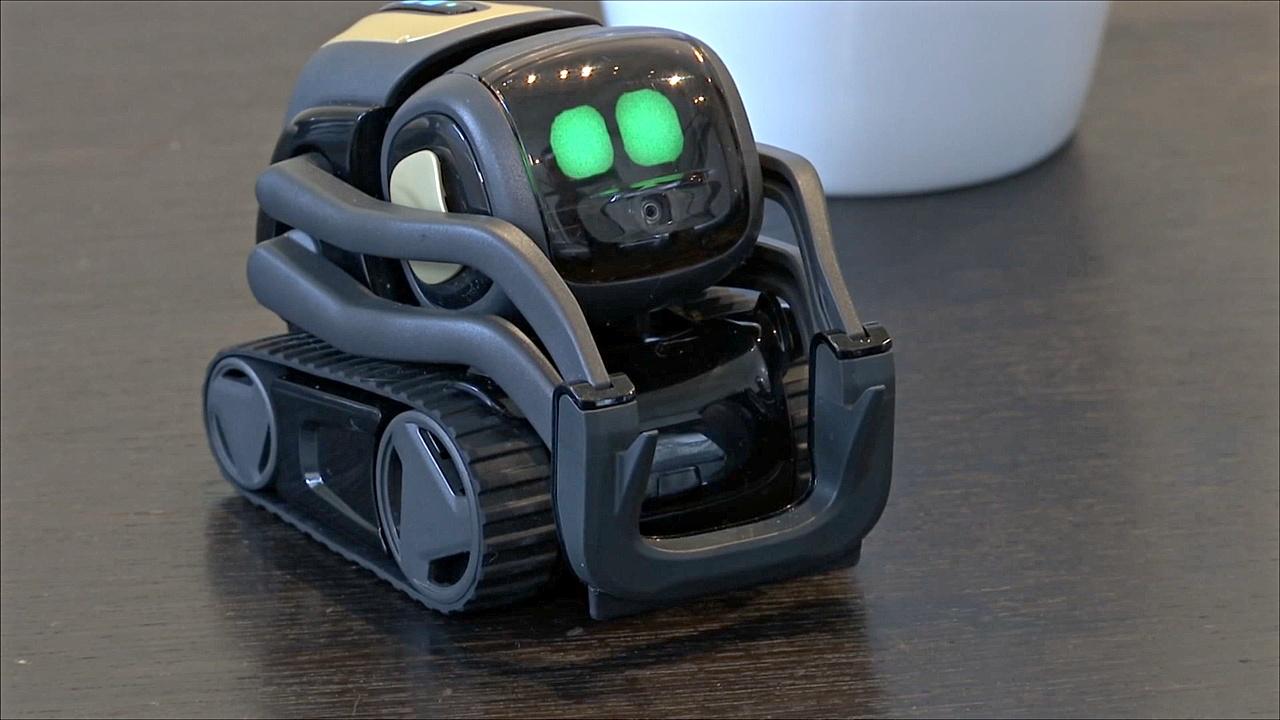 Смогут ли роботы-компаньоны обрести популярность