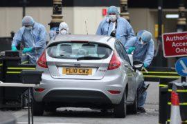 Мужчина, врезавшийся в ограду парламента в Лондоне, – гражданин Великобритании