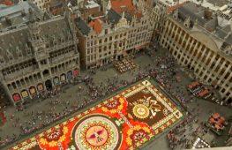 Центр Брюсселя украсил ковёр из 500 тысяч цветов