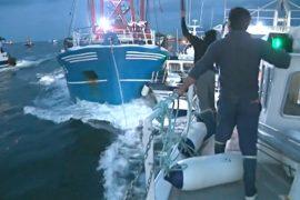 В Ла-Манше рыбаки воюют за запасы гребешка