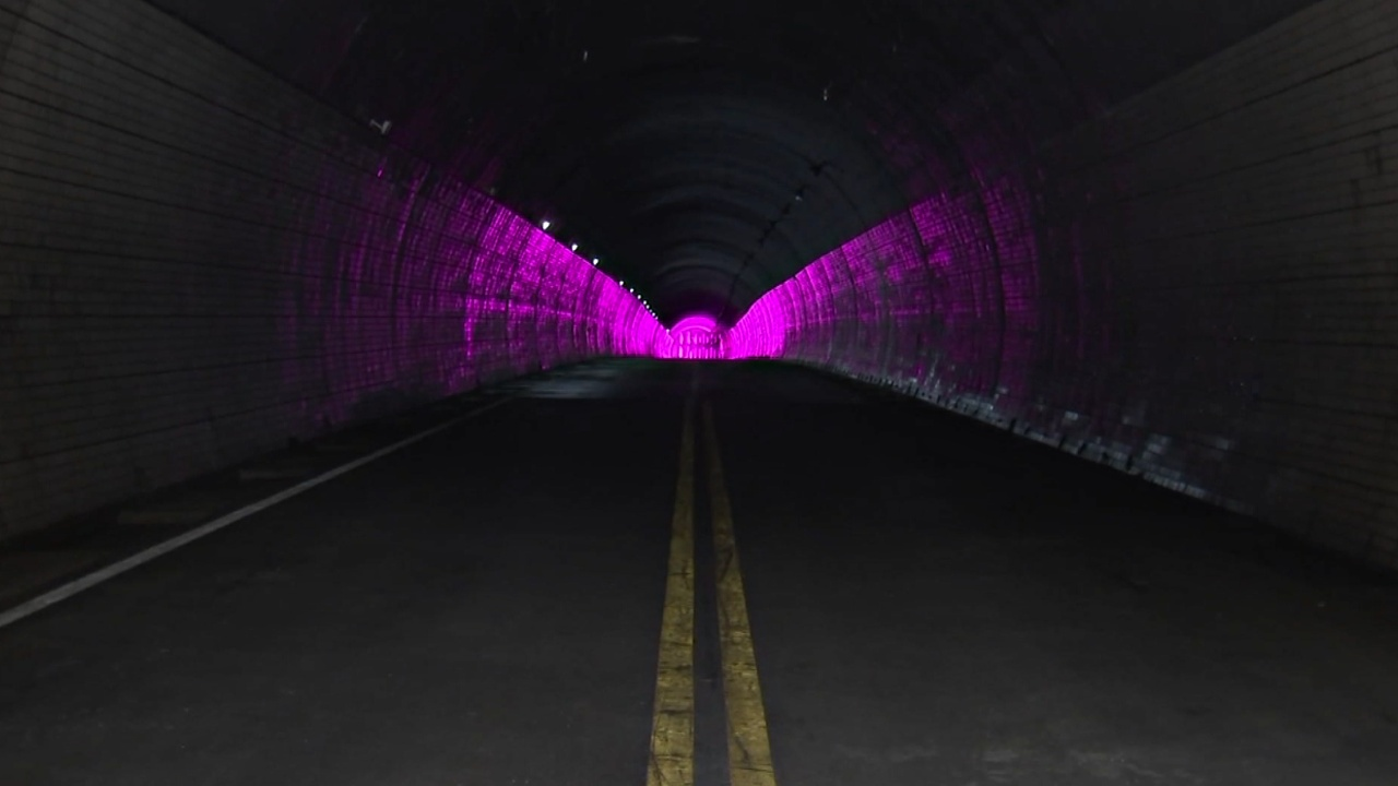 В Южной Корее работает первая в мире вертикальная ферма в тоннеле