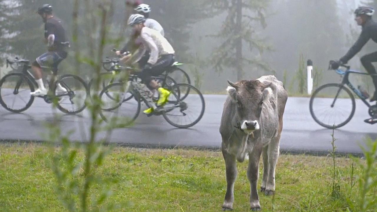 4000 велосипедистов поучаствовали в веломарафоне в Альпах
