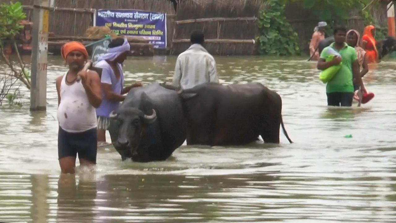 В Индии после наводнений распространяется опасная лихорадка