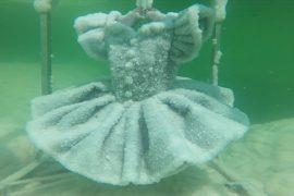 Художница создаёт скульптуры из кристаллов соли в Мёртвом море