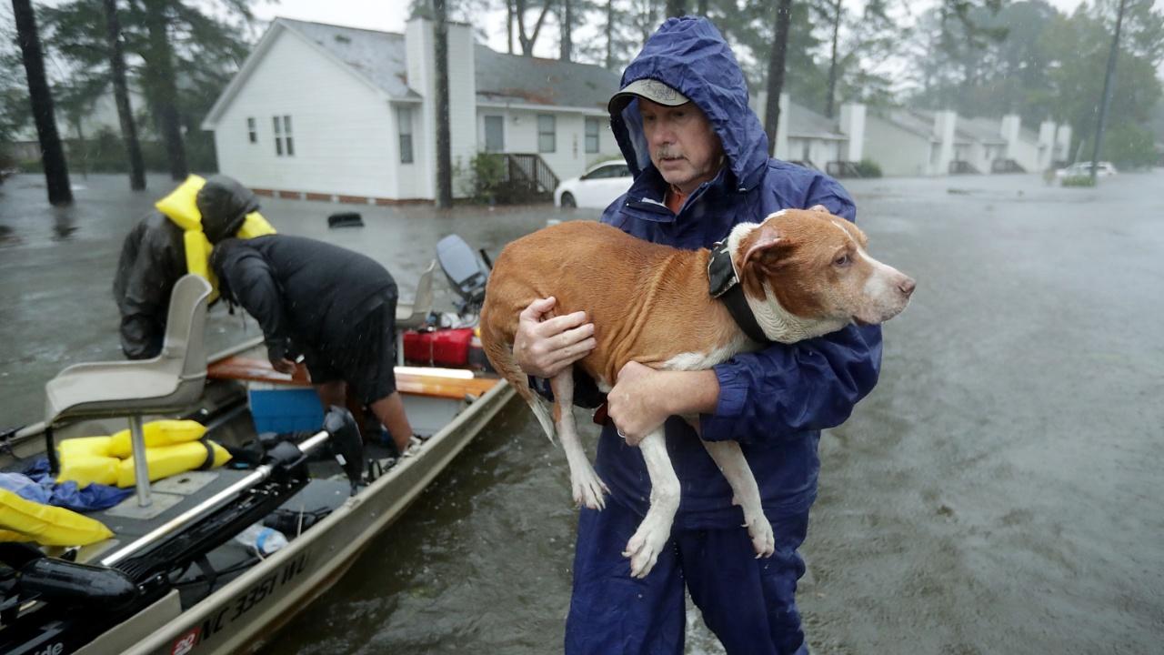 Ураган «Флоренс» затапливает США, тайфун «Мангхут» свирепствует в Азии
