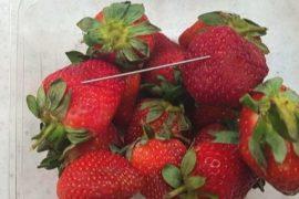 Фрукты и ягоды в Австралии начиняют иглами неизвестные злоумышленники