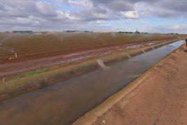 Сточные воды помогут фермерам Австралии преодолеть засуху