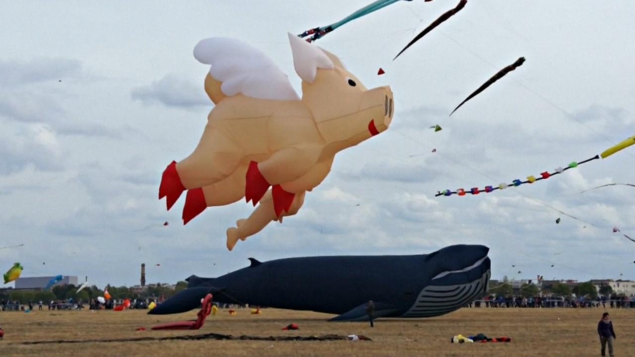 Фестиваль воздушных змеев прошёл в Германии