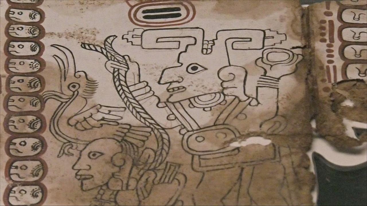 Уникальную рукопись майя возрастом почти 1000 лет выставили в Мехико