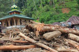Более 20 человек стали жертвами наводнений в Индонезии