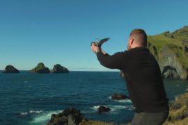 Жители исландского острова целый год ждут возможности спасать тупиков