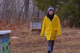 Пчёлы и девушка-бизнесмен возрождают жизнь уральской деревни