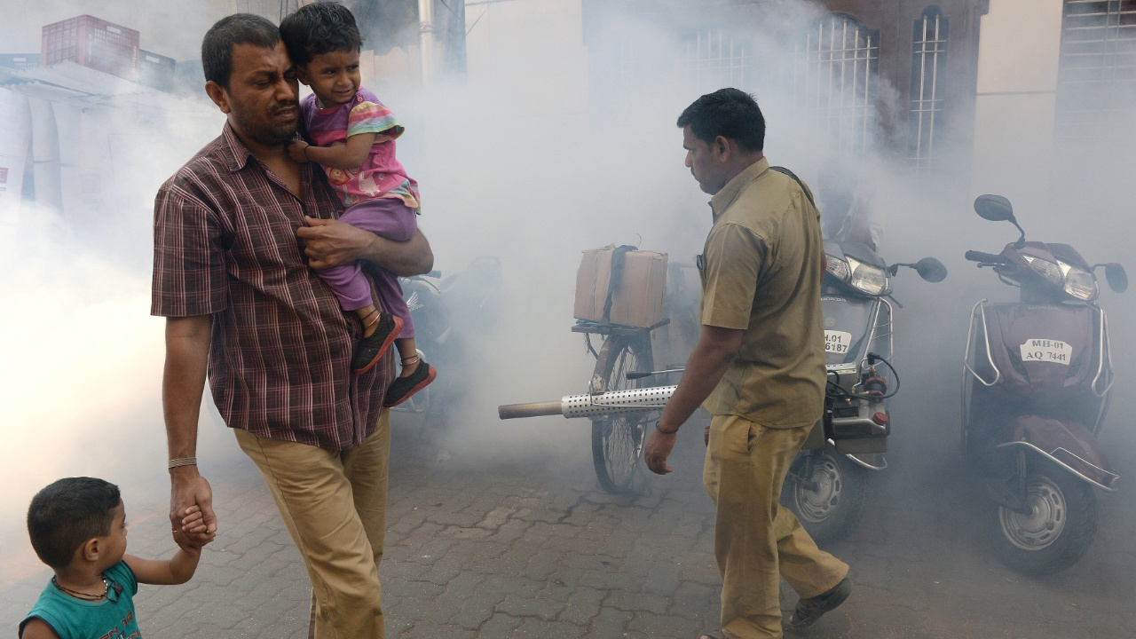 В индийском Джайпуре более 70 человек заболели лихорадкой Зика