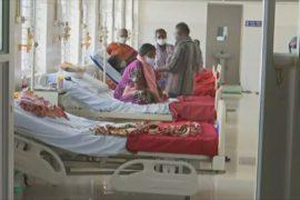В индийском Бангалоре растёт число жертв свиного гриппа