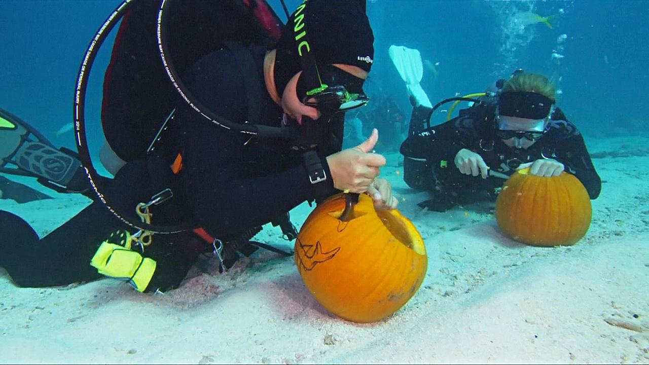 Во Флориде тыквы на Хэллоуин вырезают под водой