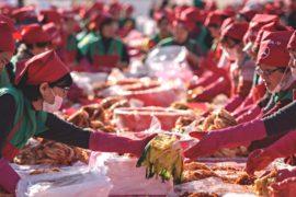 Корейцы опять собрались на массовое приготовление кимчхи