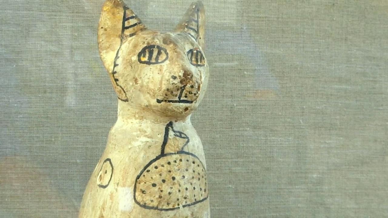 Мумии скарабеев и кошек нашли в египетском некрополе Саккара