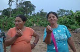 Кулинарная экспедиция: шеф-повара ищут знания в боливийском заповеднике