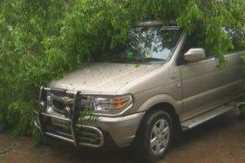 Число жертв циклона «Гаджа» в Индии возросло до 33