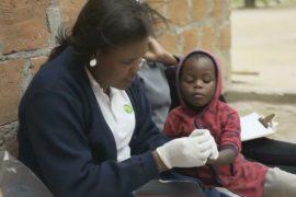 ВОЗ разработала новый глобальный план по борьбе с малярией