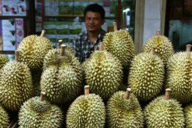 Спрос на зловонный дуриан в Китае создаёт новые плантации в Малайзии