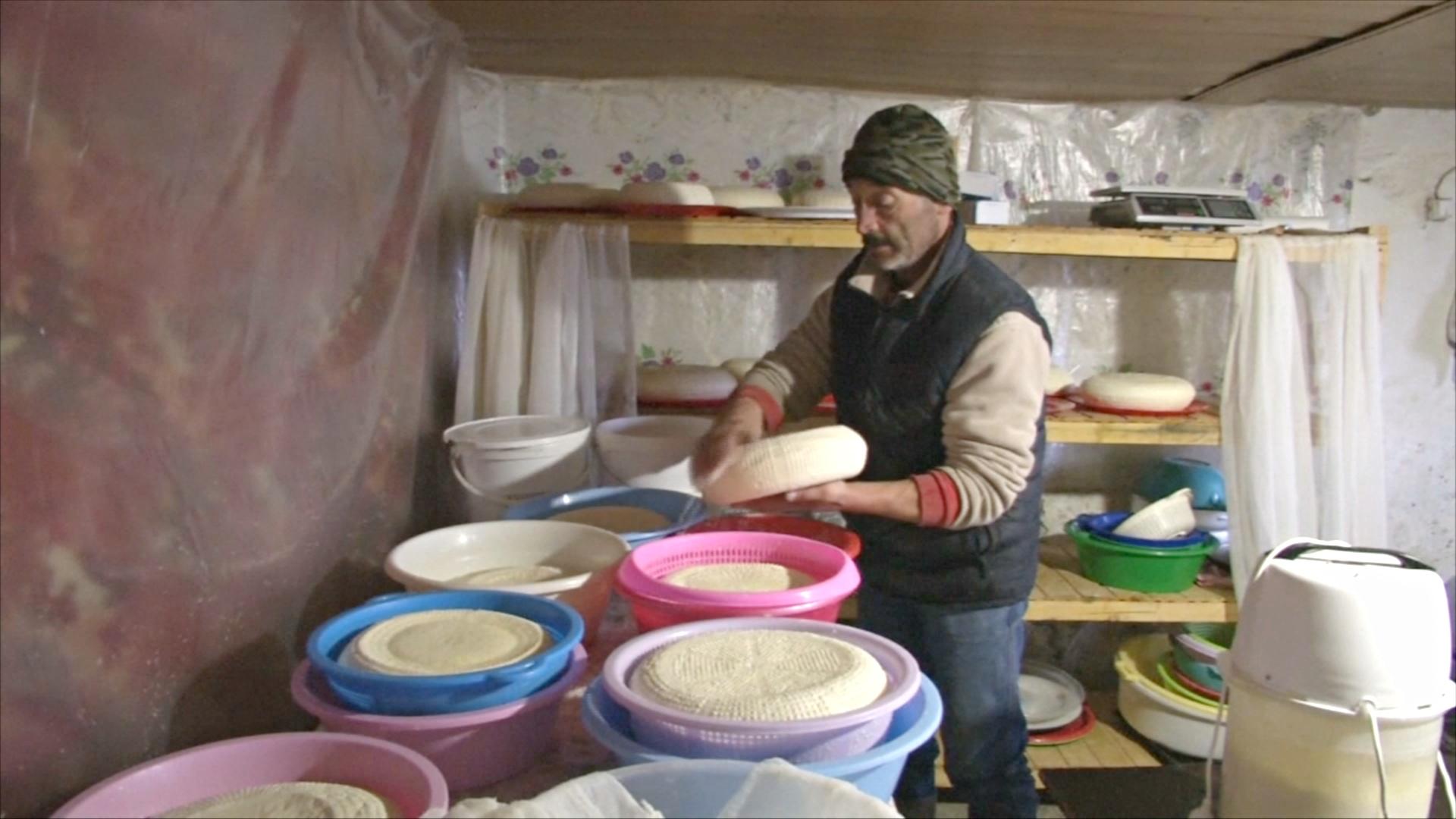 Осетинский производитель сыра борется за выживание своей фермы