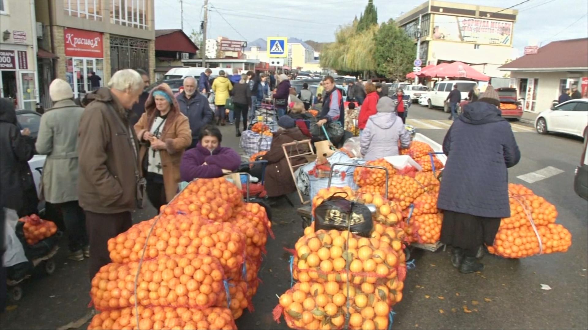 На границе с Абхазией – мандариновый рай