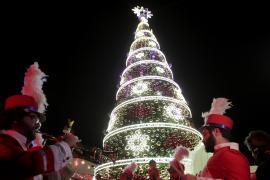 От самой большой до самой дорогой: как выглядят самые яркие рождественские ели в мире