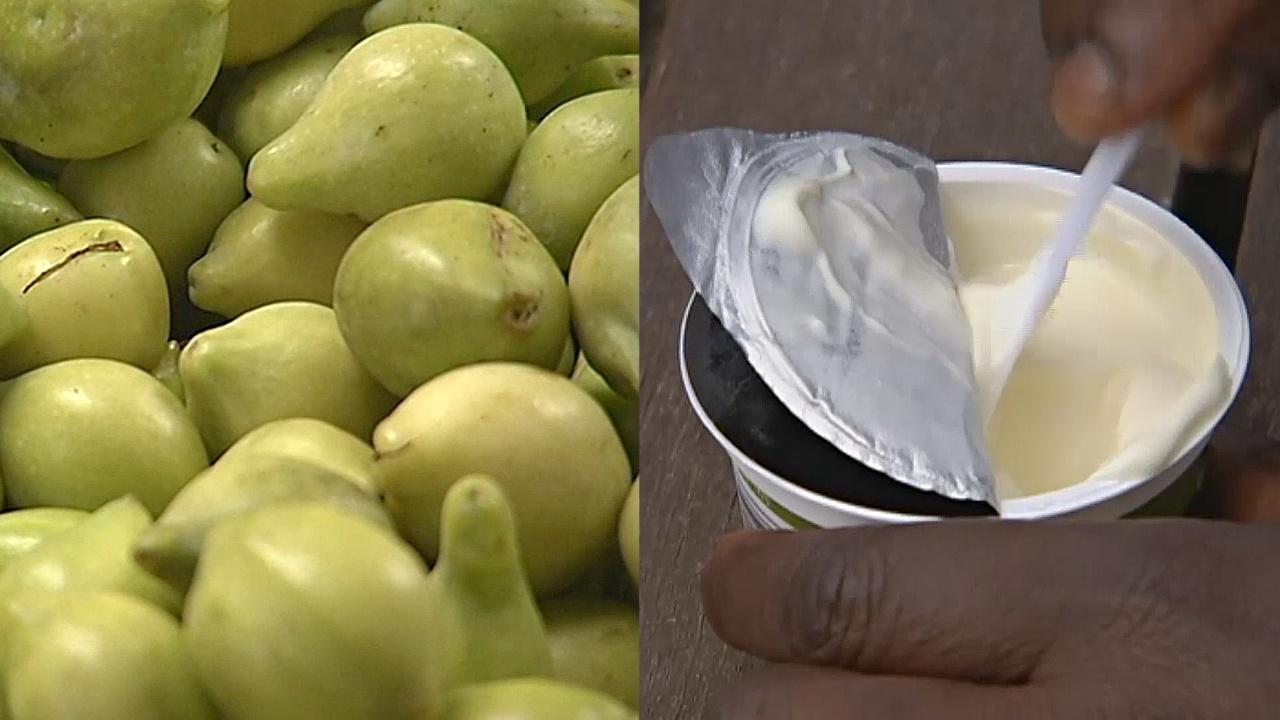 Местный вкус: в Австралии йогурт начали делать из сливы какаду