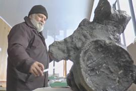 Учёные открыли новый вид динозавра, обитавшего на территории России