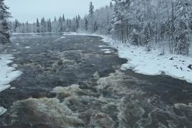 Лапландии грозит меньше снежных дней в году