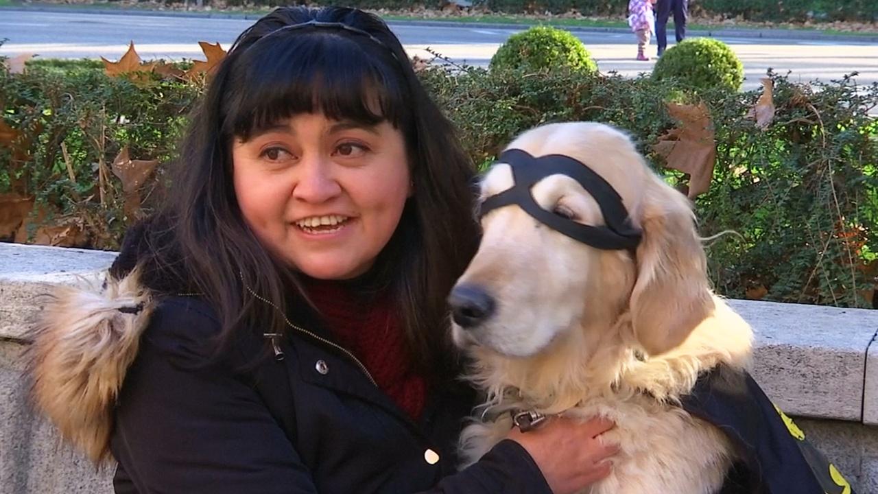 В Мадриде прошёл праздничный марафон собак и их владельцев